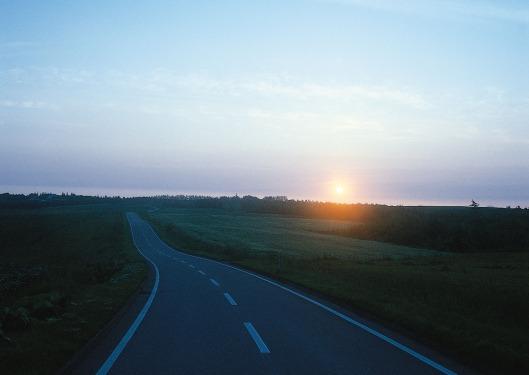 Volviendo al Camino